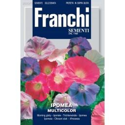 Ипомея, смесь (5 гр)  VXF 333/1   Franchi Sementi