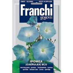 Ипомея вьющаяся, синяя (2 гр)  VXF 333/2   Franchi Sementi