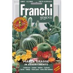 Кактусы (Суккуленты), смесь (0,5 гр) DBFS 343/1   Franchi Sementi