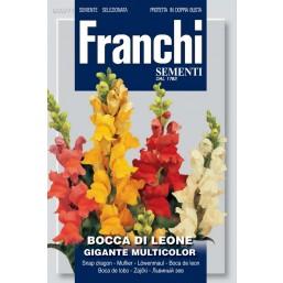 Львиный зев гигантский Gigante, смесь (1 гр) VXF 307/1   Franchi Sementi
