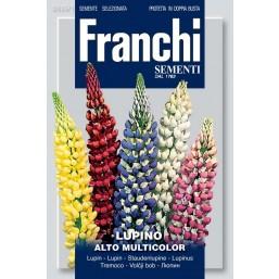 Люпин высокий, смесь (2 гр) VXF 335/1   Franchi Sementi