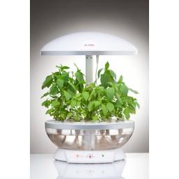 """Белый с прозрач. бассейном гидропонная установка """"Домашний сад"""" BONTILAND(предназначена для выращ.в дом.условиях зелени, цветов, низкор.сортов овощей)"""