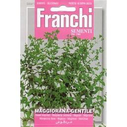 Майоран  DBA 88/1   Franchi Sementi