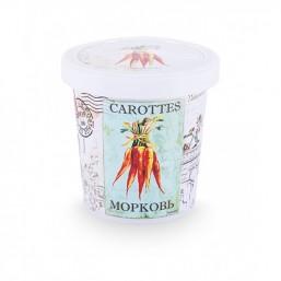 Морковь набор для выращивания ROSTOK VISA  (пласт. горшочек, обогощенный грунт, пакет с семенами)