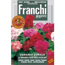 Пеларгония зональная крупноцветковая, смесь (0,2 гр) DBFS 327/2   Franchi Sementi