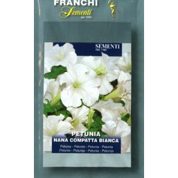 Петуния компактная белая (0,5 гр)  DBF 342/3   Franchi Sementi