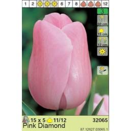 Тюльпаны Pink Diamond (x5) 11/12 (цена за шт.)
