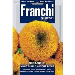 Подсолнух низкий махровый (4 гр)  DBF 329/2   Franchi Sementi