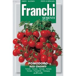 Помидор Red Cherry (1,3 гр) VXO106/111   Franchi Sementi