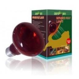 R63050 Лампа инфракрасная REPTI INFRARED UV 50w