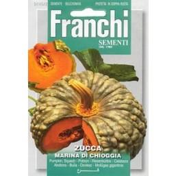 Тыква  MARINA DI CHIOGGIA (0,2 гр) 145/2 Franchi Sementi