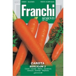 Морковь Berlicum 2 (0,2 гр)  23/15 Franchi Sementi