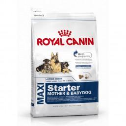 Сухой корм Royal Canin Maxi Starter M&B 15kg