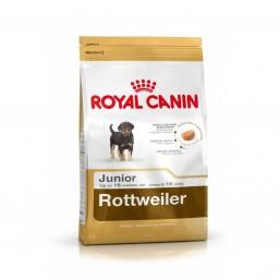 Сухой корм Royal Canin Rottweiler 31 Junior 12kg