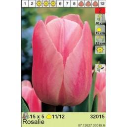 Тюльпаны Rosalie (x5) 11/12 (цена за шт.)