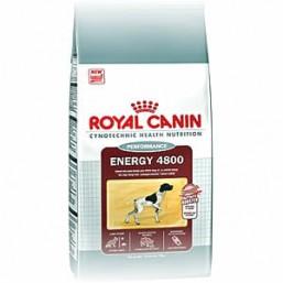 Сухой корм Royal Canin Energy 4800
