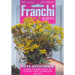 Рута лекарственная (1 гр) DBA 117/1   Franchi Sementi