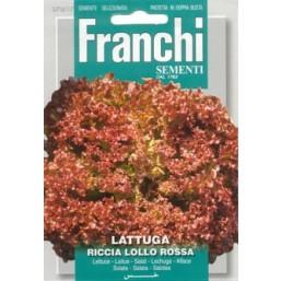 Салат Латук Riccia Lollo Rossa (5 гр) VXO 78/17   Franchi Sementi