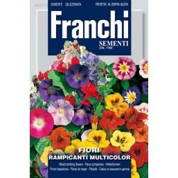 Смесь из вьющихся цветов Rampicanti, смесь (1 гр)  VXF 321/2   Franchi Sementi