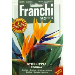 Стрелиция DBFS 352/50   Franchi Sementi