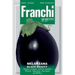 "Семена ""Баклажан"" BLACK BEAUTY 50 гр 90/21 Franchi Sementi"