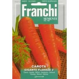 "Семена ""Морковь Flakkee"" 100 гр 23/13 Franchi Sementi"