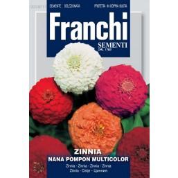 Циния низкая помпонная  POMPON DBF 358/11   Franchi Sementi