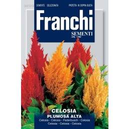 Целозия перистая Plumosa Alta, смесь (1 гр)  VXF 312/2   Franchi Sementi