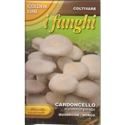 Вешенка королевская или степной белый гриб (100 гр) Cardoncello   Franchi Sementi