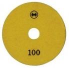 Полировочный диск 100 (10шт)