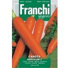 Морковь Berlicum 2 100гр.  A 23/15   Franchi Sementi