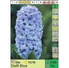 Гиацинты Delft Blue (x75) 15/16 (цена за шт.)
