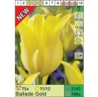 Тюльпаны Ballade Gold (x100) 11/12 (цена за шт.)