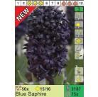 Гиацинты Blue Saphire (x75) 15/16 (цена за шт.)