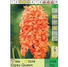 Гиацинты Gipsy Queen (x75) 15/16 (цена за шт.)
