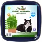 """Рожь """"Для кошек"""" живые витамины BONTILAND (пластик. коробочка, универсальный грунт, семена)"""