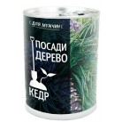 """Кедр """"Посади дерево"""" подарочный набор для выращивания BONTILAND (метал. банка, универсальный грунт, семена, высота-9,8см, диамерт-7,8см)"""