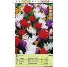 Луковицы микс SUP 38004 (x18) I (цена за шт.)