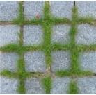 Брусчатка гранитная серая (100 шт в 1 м.кв)
