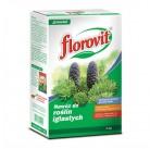 Флоровит гранул долгодействующее удобрение для хвойных 100 дней, 4 кг