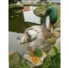 Садовая фигурка Селезень чистящий перья MG22983(Р4 С4)
