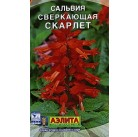Сальвия Скарлет 0,1 гр. Агроуспех
