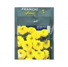 """Семена цветов """"Тагетис желтый"""" 30 гр.   Franchi Sementi"""