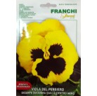 Анютины глазки Giallo A Centro Nero, желтые (0,5 гр) VXF355/11   Franchi Sementi