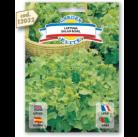 Салат Salad bowl семена DB