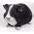 Садовая фигурка Морская свинка черно-белая BJ112232V-1(2)  GS