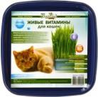 """Пшеница """"Для кошек"""" живые витамины BONTILAND (пластик. коробочка, универсальный грунт, семена)"""