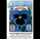 Анютины глазки синие Del pensiero gigante семена DB