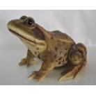 Садовая фигурка Лягушка коричневая большая BJ122061-1