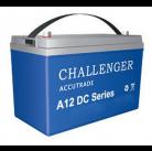 Аккумуляторная батарея Challenger A12DC-225A